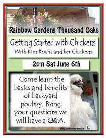 2fcc0c1a_getting_started_with_chickens_thousand_oaks.jpg