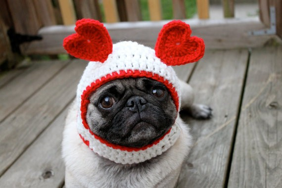 valentines-day-dog-hatjpg