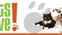 Guest Post: SA Pets Alive Announces Black Fridays