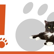 Guest Post: San Antonio Pets Alive