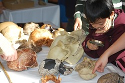 Hands-on exploration at the Fair