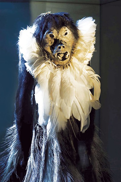 Howler Monkey mummy from Grand Chaco, Argentina - PHOTO COURTESY OF THE WITTE MUSEUM
