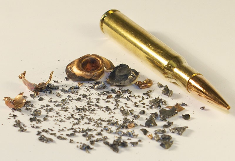 Lead ammo breaks apart on  impact and is sometimes ingested by scavengers, which could cause lead poisoning. - WILDLIFE CENTER OF VIRGINIA
