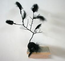 Margaret Meehan, 'Blackbird'