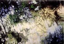 arts-sapaint2-shadrock_220jpg