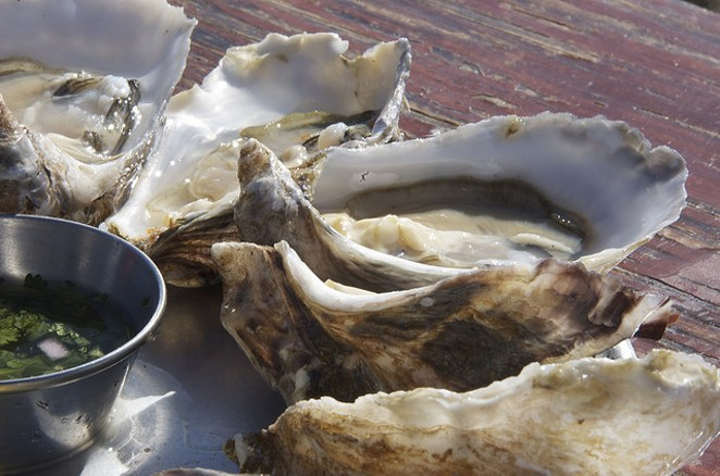 Who's ready for more oysters? - FLICKR/DANIEL & SHARON BURKA