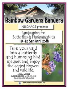 d71a674f_landscaping_for_butterflies_and_hummingbirds_bandera.jpg