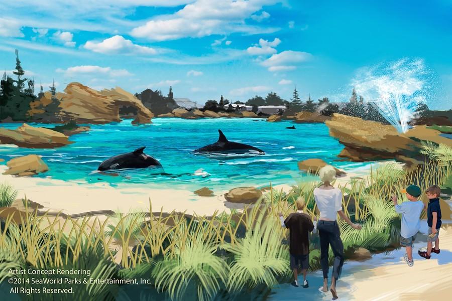 sea_beach-viewjpg