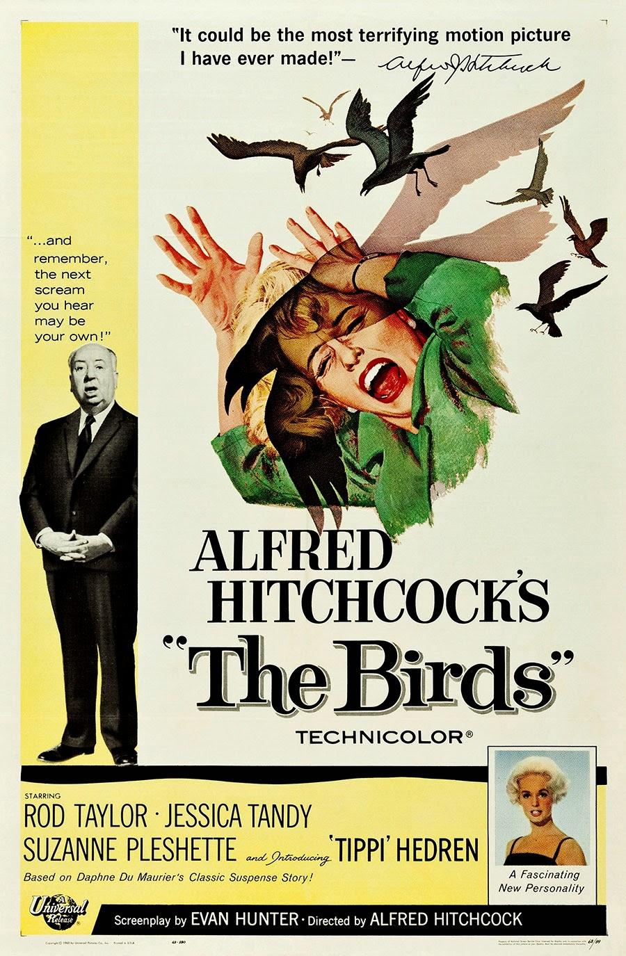 21_the_birds