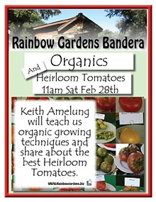99e12ed5_organics_and_heirloom_tomatoes_bandera.jpg
