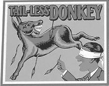news_donkeyjpg