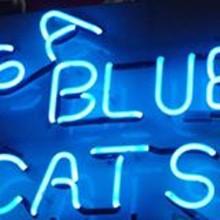 00726fe7_sa_blue_cats.jpg