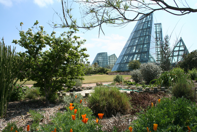 San Antonio Botanical Garden - COURTESY OF THE CITY OF SAN ANTONIO