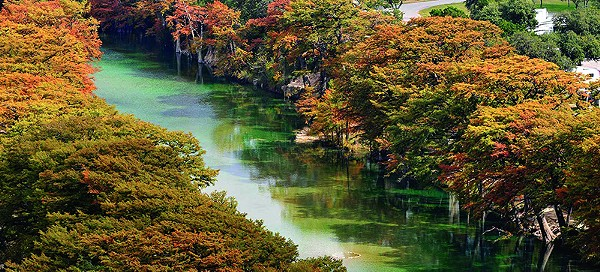 The Frio River is a secluded alternative to the usually packed New Braunfels scene. - COURTESY