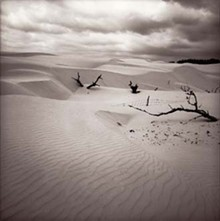 visart-dunes-5x_330jpg