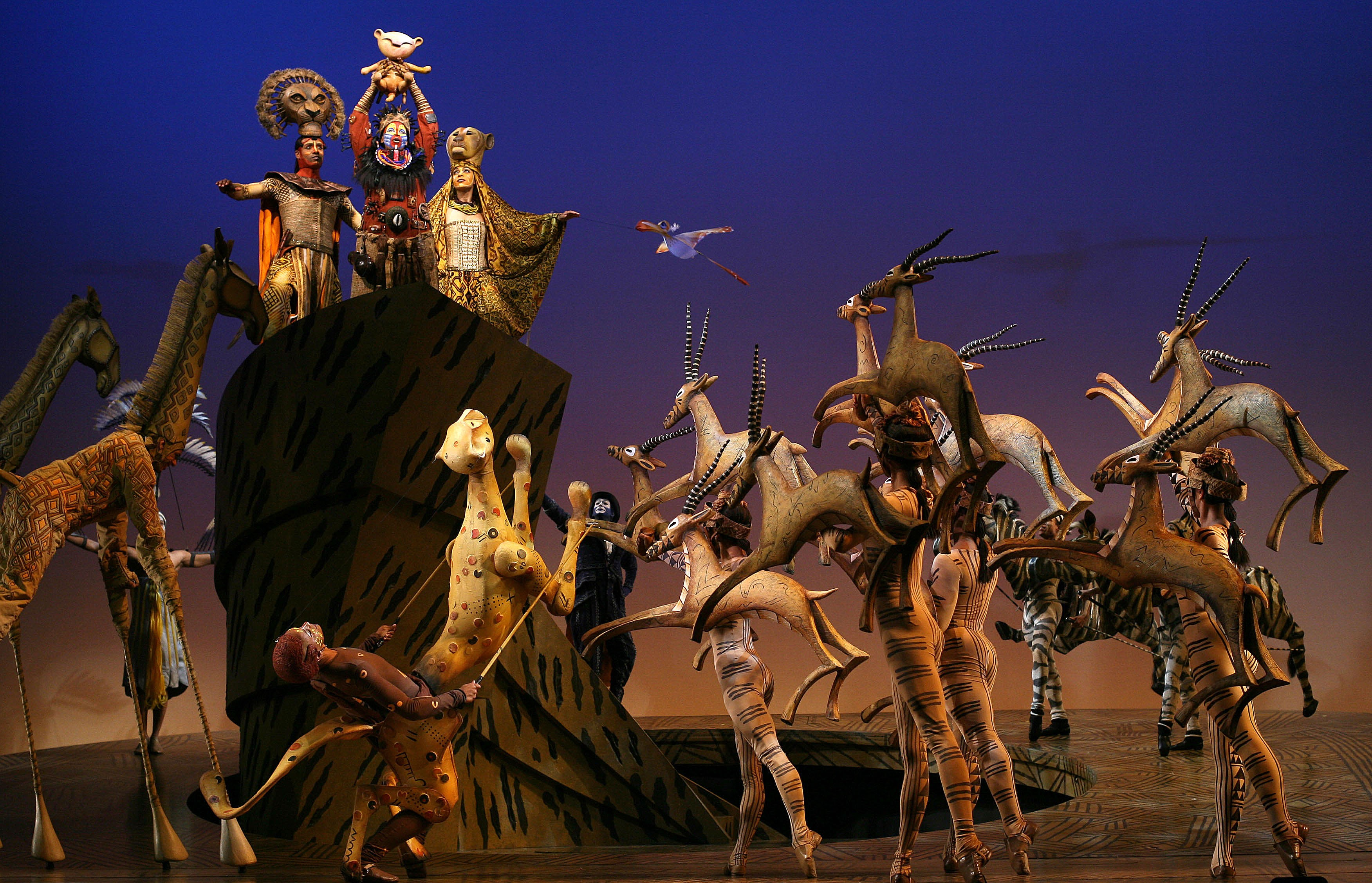 Review The Lion King At The Majestic Theatre Artslut