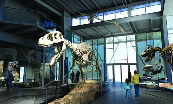 Artist rendering of the Witte Museum's upcoming Dinosaur Gallery - COURTESY OF THE WITTE MUSEUM