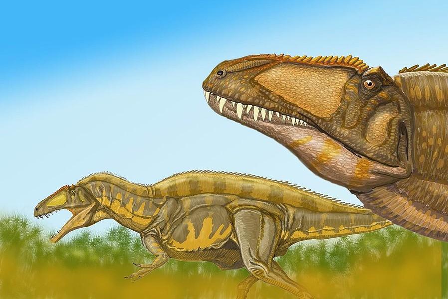 acrocantosaurusjpg