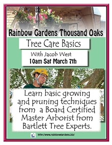 759645e3_tree_care_basics_thousand_oaks.jpg