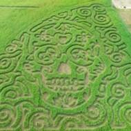 New San Antonio-Area Corn Maze Takes the Form of a Dia de los Muertos Sugar Skull