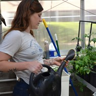 Eco Centro's Project to Bring Agriculture to a Downtown College Campus Shows How Cities Can Sustainably Feed Their Populations