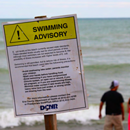 Ready to Dive In? Texas Beaches Have So Much Poop It Could Make You Sick, According to New Report