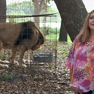 Carole Baskin, the Big Cat Lady Featured in Netflix Docuseries <i>Tiger King</i>, Was Born in San Antonio