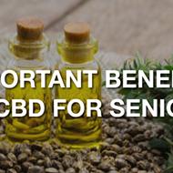 Important Benefits Of CBD For Seniors
