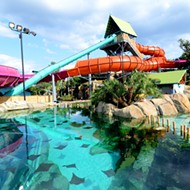 SeaWorld San Antonio to Make Aquatica a Standalone Park and Offer Swimming With Dolphins at New Discovery Point Park