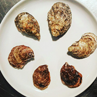 Pop in to Rebelle for East Coast Oyster Happy Hour During Fiesta