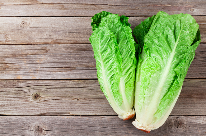 Stay away from romaine lettuce. - SHUTTERSTOCK