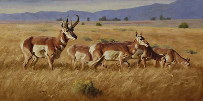 SALLY VANNOY  / COURTESY OF THE BRISCOE WESTERN ART MUSEUM