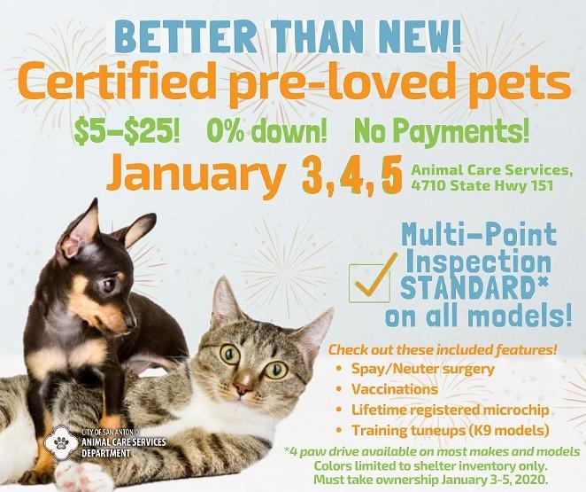 FACEBOOK / CITY OF SAN ANTONIO ANIMAL CARE SERVICES