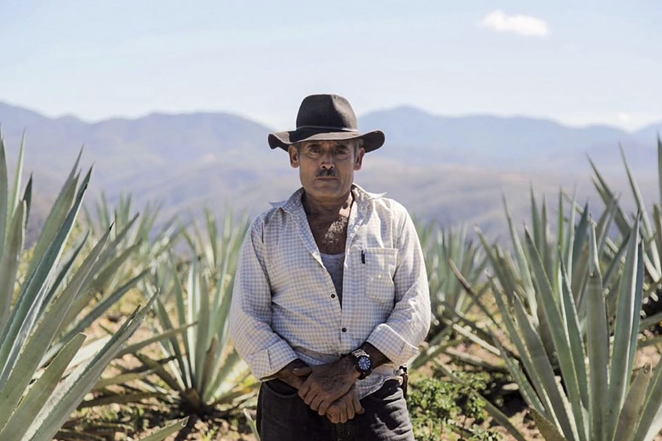 Don Aquilino devoted his entire life to bringing the flavors of the Agave plant into mezcal. - INSTAGRAM / MEZCALVAGO