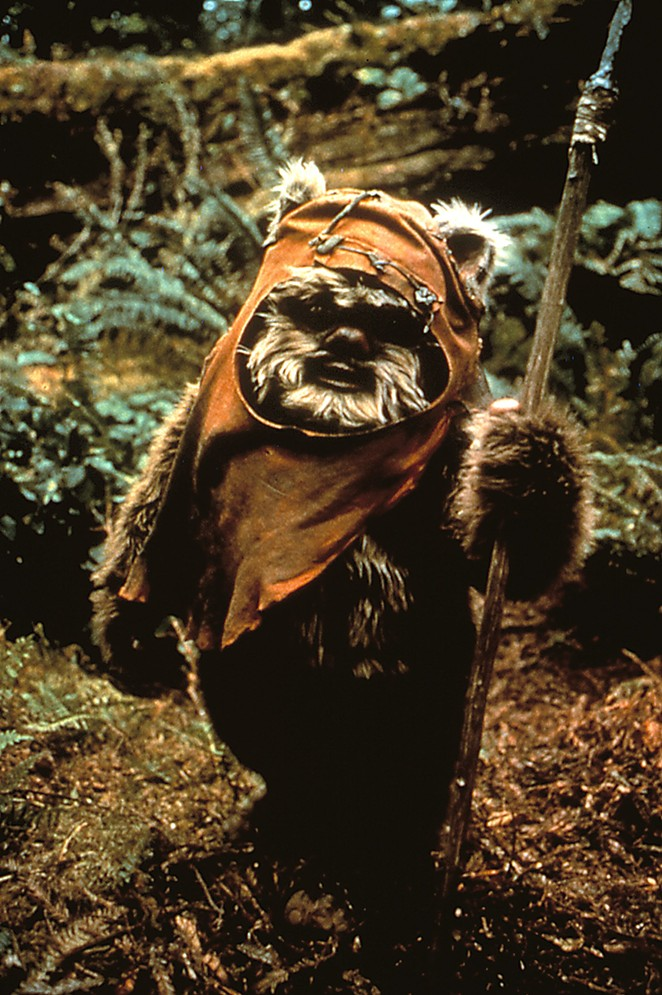 The parody takes its name from the Ewok Wicket, played by Warwick Davis in The Return of the Jedi. - WALT DISNEY STUDIOS MOTION PICTURES