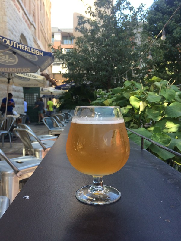 Southerleigh's Koalas, Cockerel Spaniels and Unicorns gose - MARK STENBERG