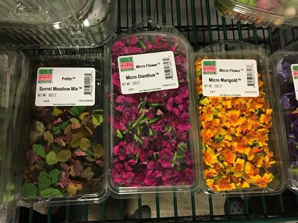 Edible flowers - JESSICA ELIZARRARAS