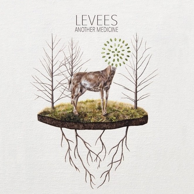 "COVER ART FOR LEVEES' ""ANOTHER MEDICINE"""