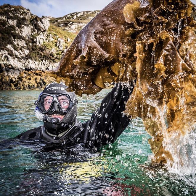 Isle of Harris' sugar kelp is sustainably harvested by Lewis Mackenzie, a local Scottish diver. - INSTAGRAM / ISLEOFHARRISDISTILLERS