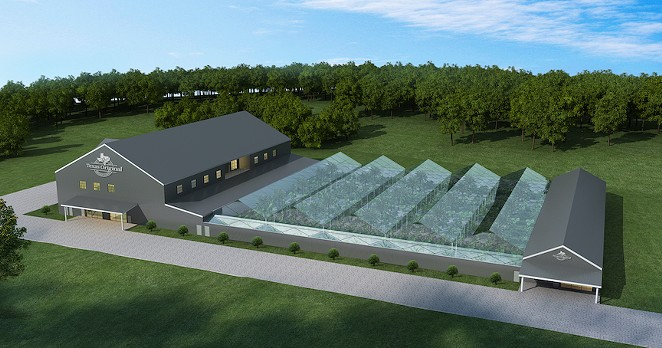 This rendering shows the growing facility Texas Original Compassionate Cultivation is building in Central Texas. - COURTESY IMAGE / TEXAS ORIGINAL COMPASSIONATE CULTIVATION