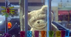 DOES A BEAR NEED MANY GLASSES?