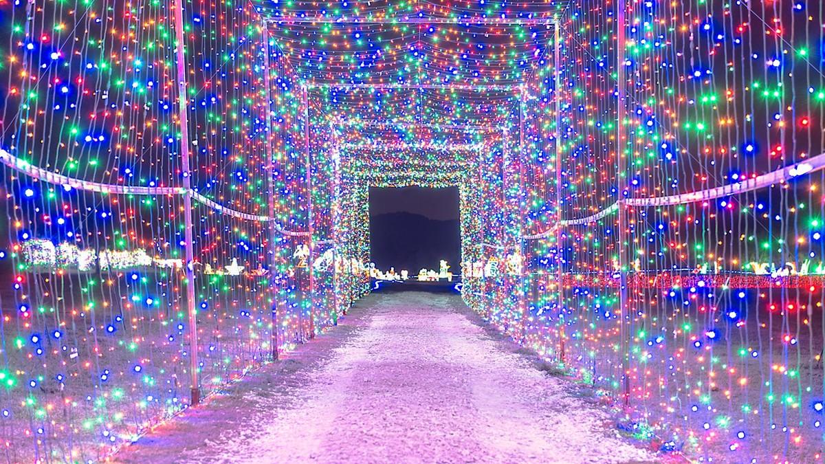 r_2017_christmas_lights_fest_dsc4404-edit_castle_arts_en.jpg