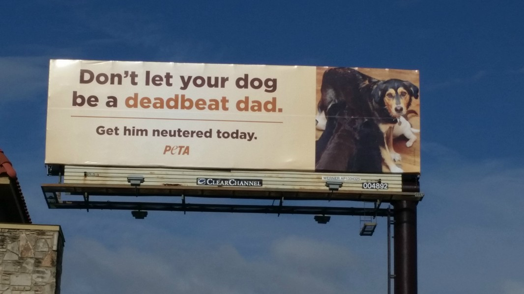 PETA placed this billboard on Loop 410 near Starcrest. - PEOPLE FOR THE ETHICAL TREATMENT OF ANIMALS (PETA)