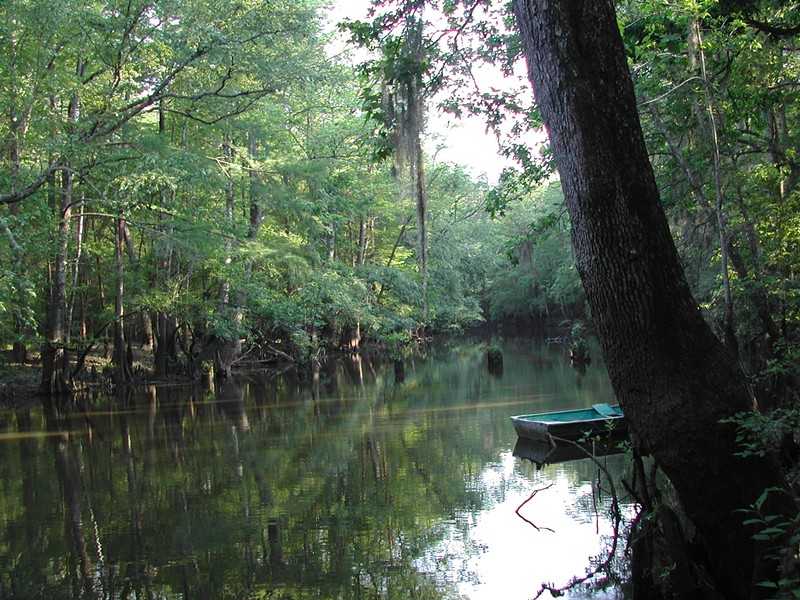 Big Thicket National Preserve - KLRN