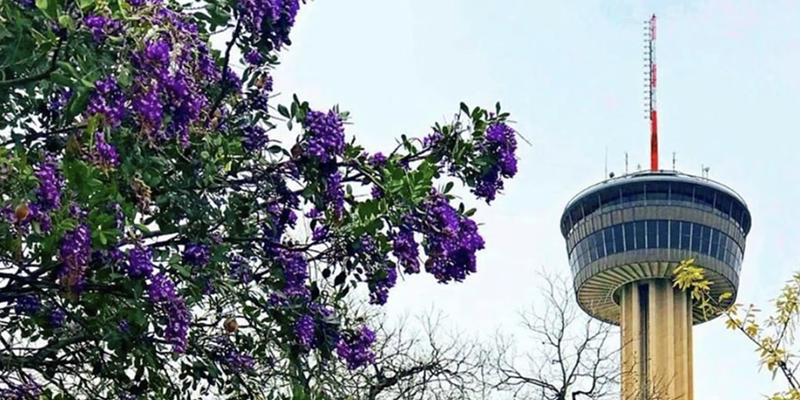 The Tower of the Americas will host its third annual Wine Fest next month.