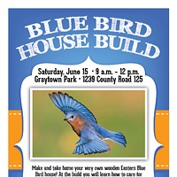Blue Bird House Build