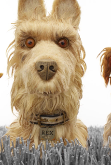 Isle of Dogs is a Deadpan, Whimsical Animation Wes Anderson Fans will Lap Up