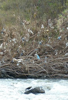 The effect of plastic bag pollution on a river.