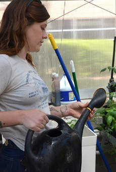 Cecile Parrish waters plants in a campus greenhouse.