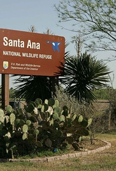 Judge Approves Border Wall Work Next to South Texas' Protected Santa Ana Wildlife Refuge